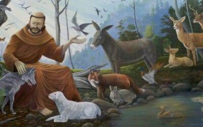 Following Jesus With Joy, Like St. Francis